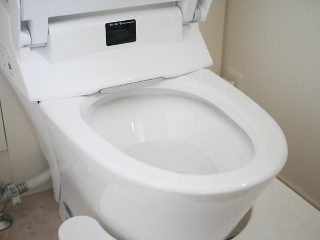トイレ,掃除
